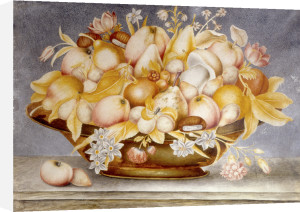 Still Life of Fruit and Flowers on a Copper Dish by Octavianus Monfort