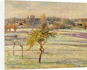 Gelee Blanche a Eragny, 1895 by Camille Pissarro