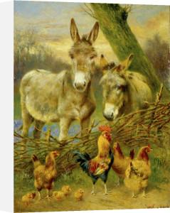 Across the Fence by Herbert William Weekes