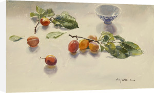 Plums by Lucy Willis