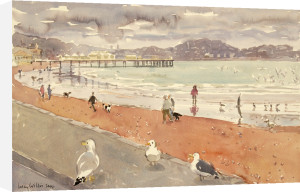 The English Seaside by Lucy Willis