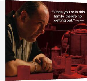 Sopranos - Tony Quote by Anonymous