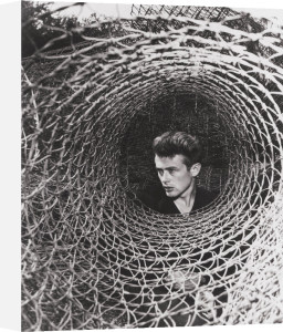 James Dean, 1955 by Anonymous