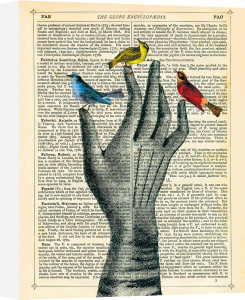 Bird in the Hand by Marion McConaghie