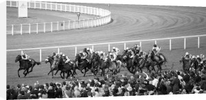 Royal Ascot Panoramic by Luru Wei