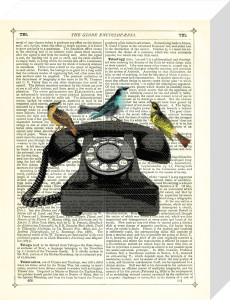 Birdcall by Marion McConaghie