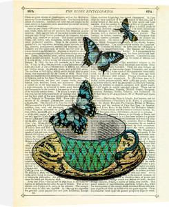 Butterfly Teal by Marion McConaghie