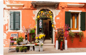 Fiori di Burano by Julian Elliott