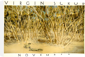 Empire Marketing Board - Virgin Scrub November by Harold Sandys Williamson