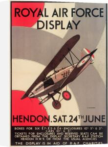 Royal Air Force Display, Hendon, 1933 by Royal Aeronautical Society