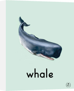 whale by Ladybird Books