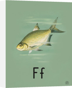 F is for fish by Ladybird Books