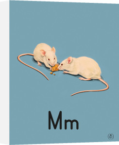 M is for mice by Ladybird Books
