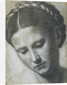 A woman's head with braided hair by Alessandro Bonvicino Moretto