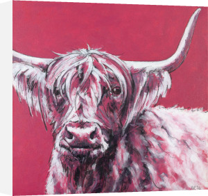 Bull on Red by Nicola King