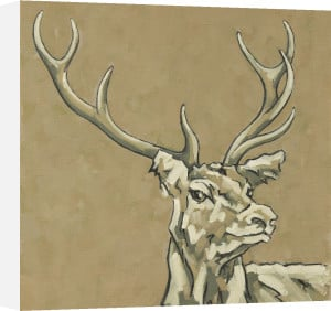 Stag by Nicola King