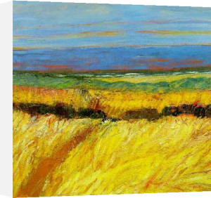Fields By The Sea by John Houston