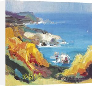 Big Sur by Judith I. Bridgland