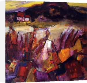 The Bennan by Eleanor McGowan