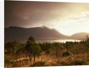 Spring Dawn, Torridon, Scotland by Richard Osbourne