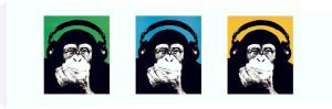 Monkey by Steez