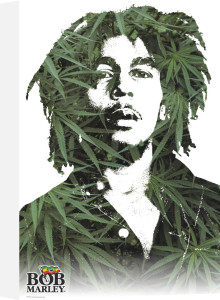 Bob Marley - Leaves by Anonymous