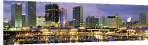 Miami Skyline and Marina at Dusk by Nigel Atherton