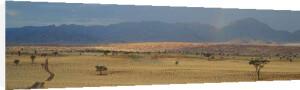 Namib Rand, Namibia by Paul Franklin