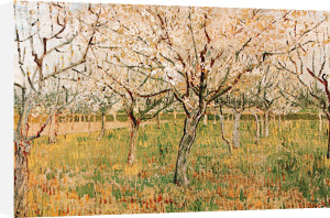 The Orchard by Vincent Van Gogh