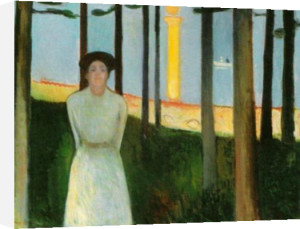 Summer Night's Dream by Edvard Munch