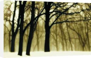 Past Dreams (large) by David Lorenz Winston