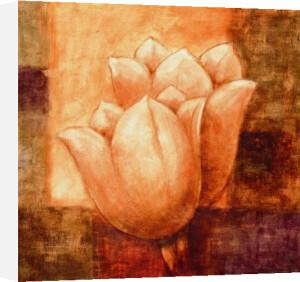 Floral Deco V by Hervé Libaud