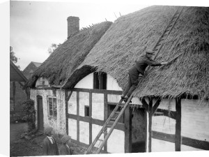 Thatcher on the roof of writer Izaak Walton's cottage by Mirrorpix