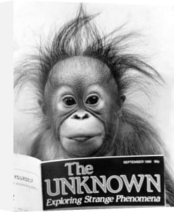 Orang-utang, 1986 by Mirrorpix