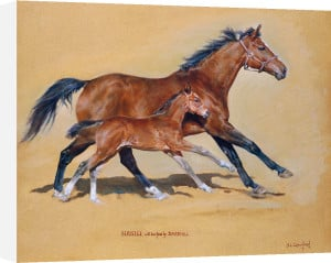 Hasili With Foal by Susan Crawford