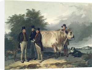 Four Men with a Bull by Richard Ansdell