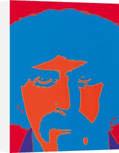 Frank Zappa by Peter Marsh