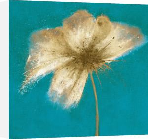 Floral Burst II by Emma Forrester