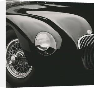 Jaguar C-Type (medium) by Retro Series
