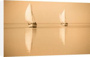 Nile Boats by Jon Hart Gardey