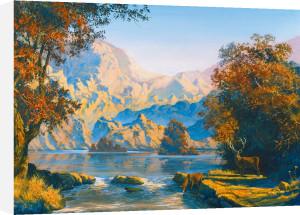 Majestic Silence by Steven Pearson