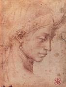 Testa Femminile di Profilo by Michelangelo