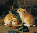 Bunnies Meal I by Alfred Barber