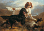 Two Setters in a Highland Landscape by Edwin Douglas