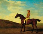 Rosaletta by George Stubbs