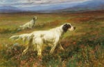 Setters on the Moors by Maud Earl