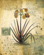 English Garden II by Joseph Augustine Grassia