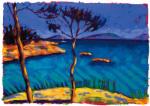 Coral Cove by Sara Hayward