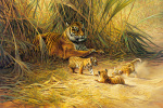 Cub Scouts by Dick Van Heerde
