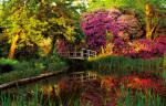 Secret Garden II by Bent Rej